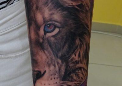 lew cover