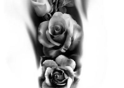 projket roses 2