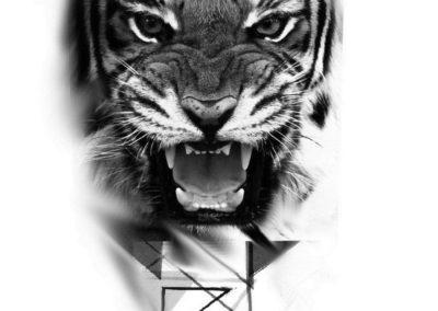 tygrys geometria - Kopia